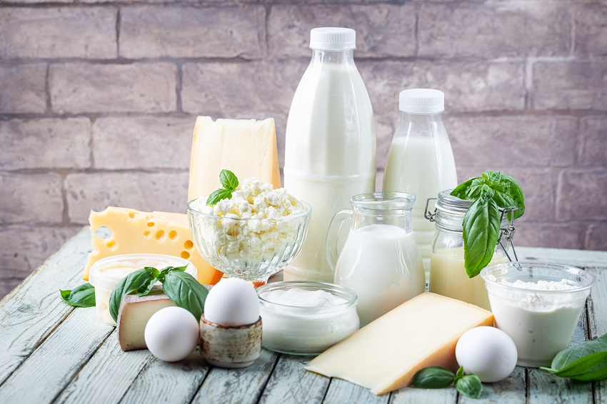 dairy products such as milk, cheese, butter, and egg on a table