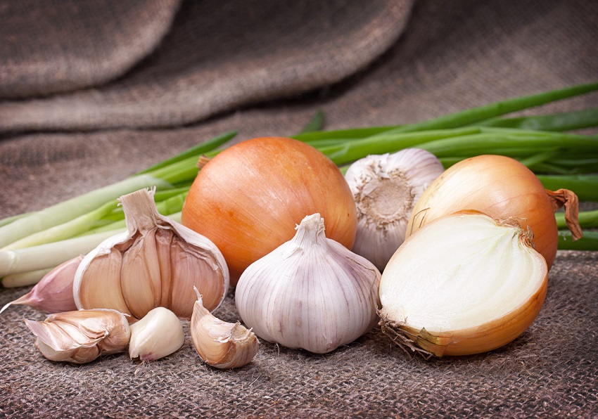 a few garlics and onions beside each other