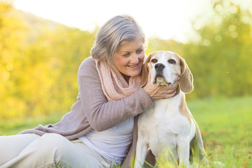 impacts of adopting pets for seniors